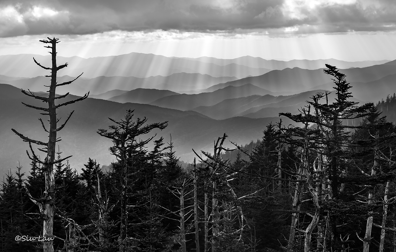 Sun Rays in the Smokies