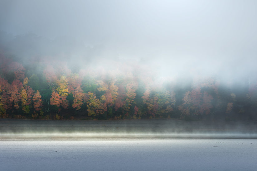Fall shades through the mist