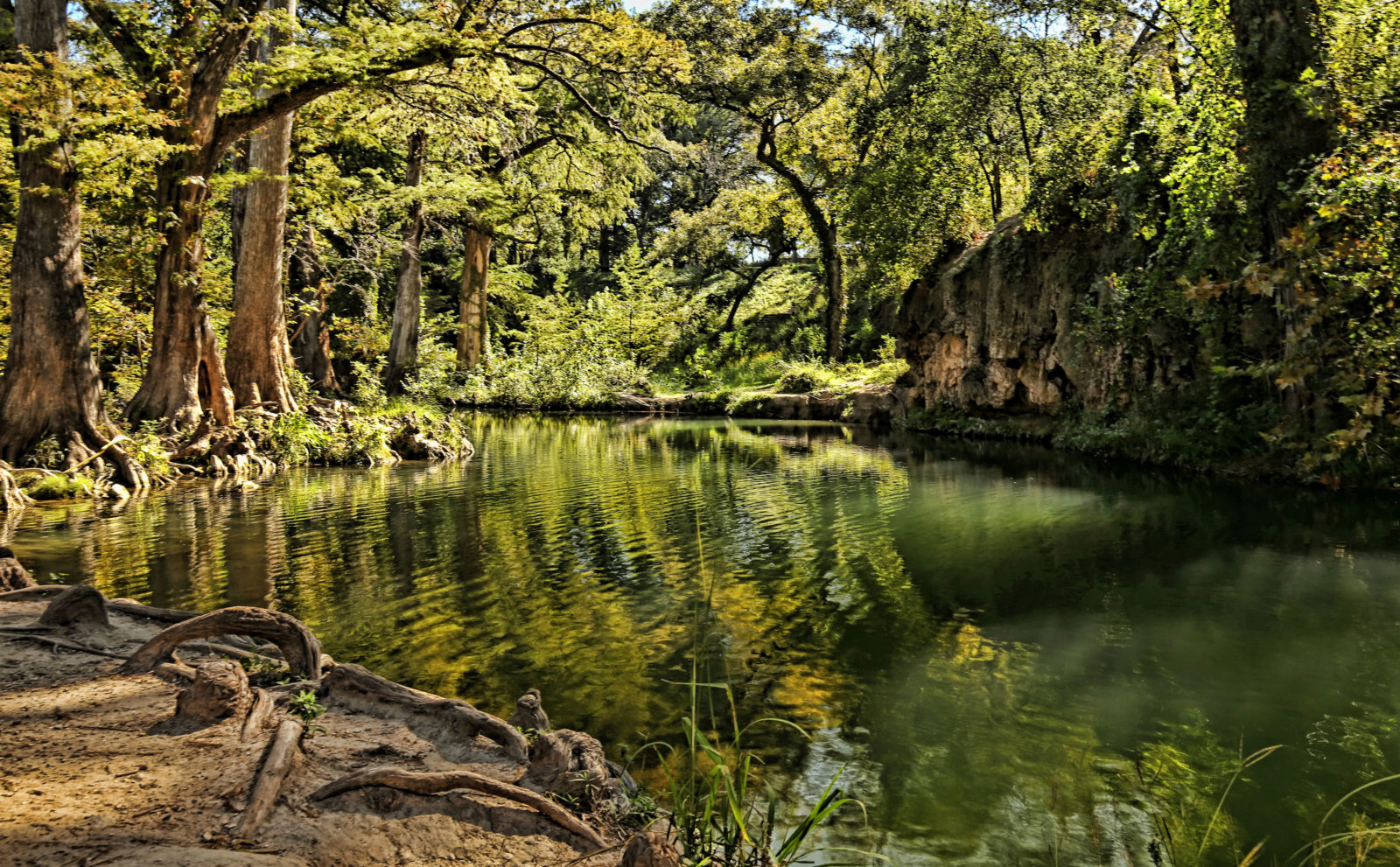 Little Cypress Creek