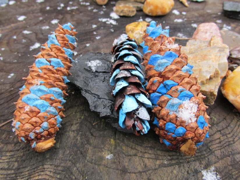 Late Winter Snow and Painted Pinecones