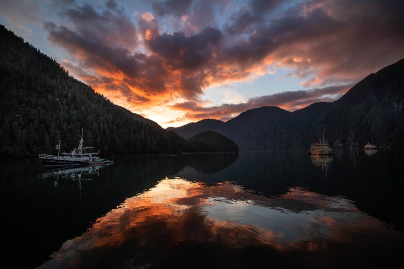 Great Bear Rainforest Sunset