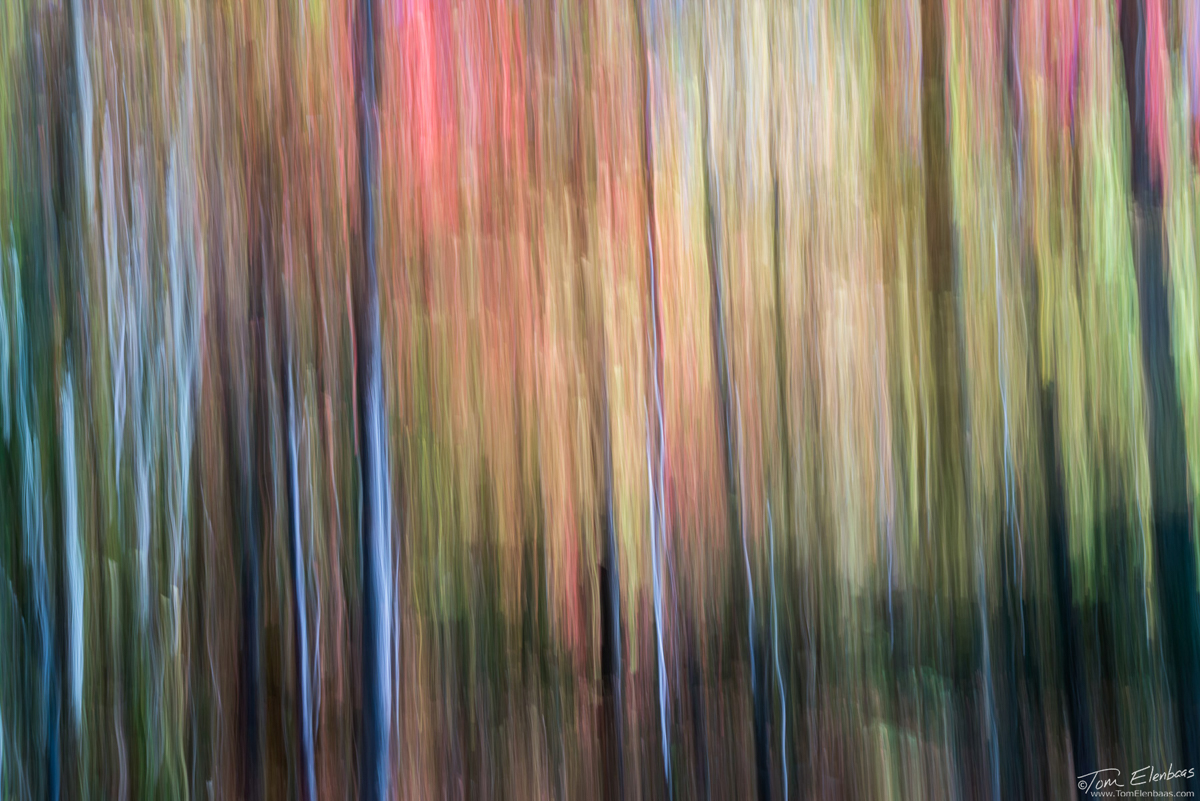 Smoky Mountains Abstract