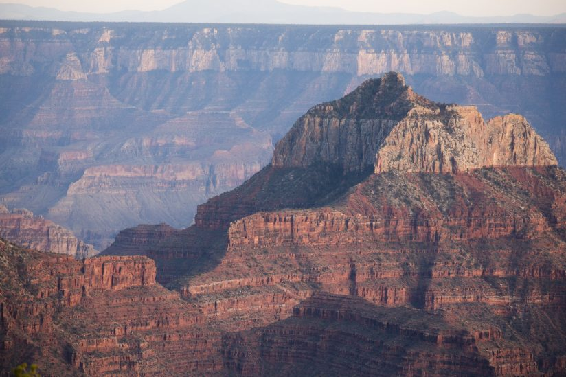 Evening Light on the Grand Canyon