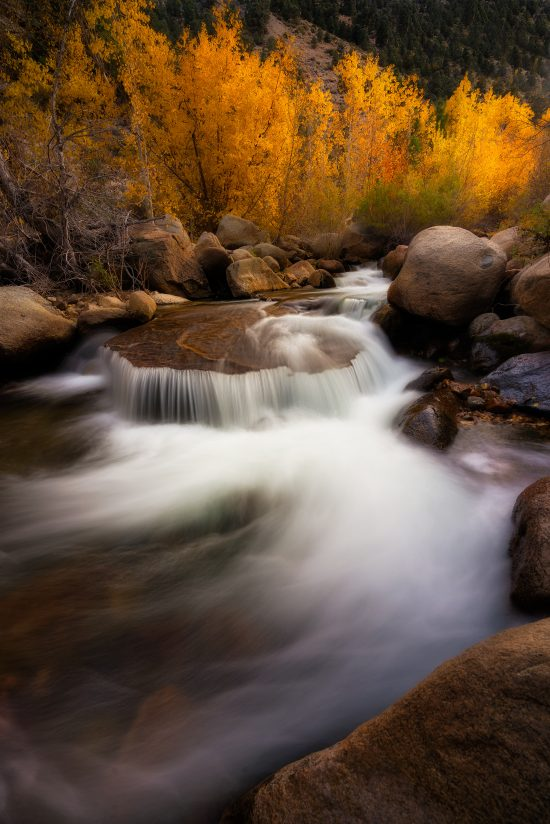 Fall Colors – Bishop Creek