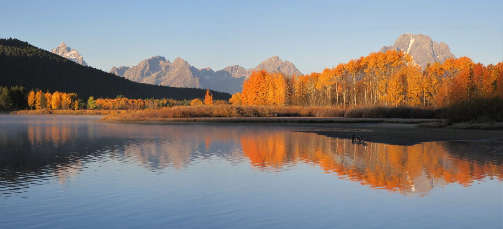 Oxbow Bend in Peak Color