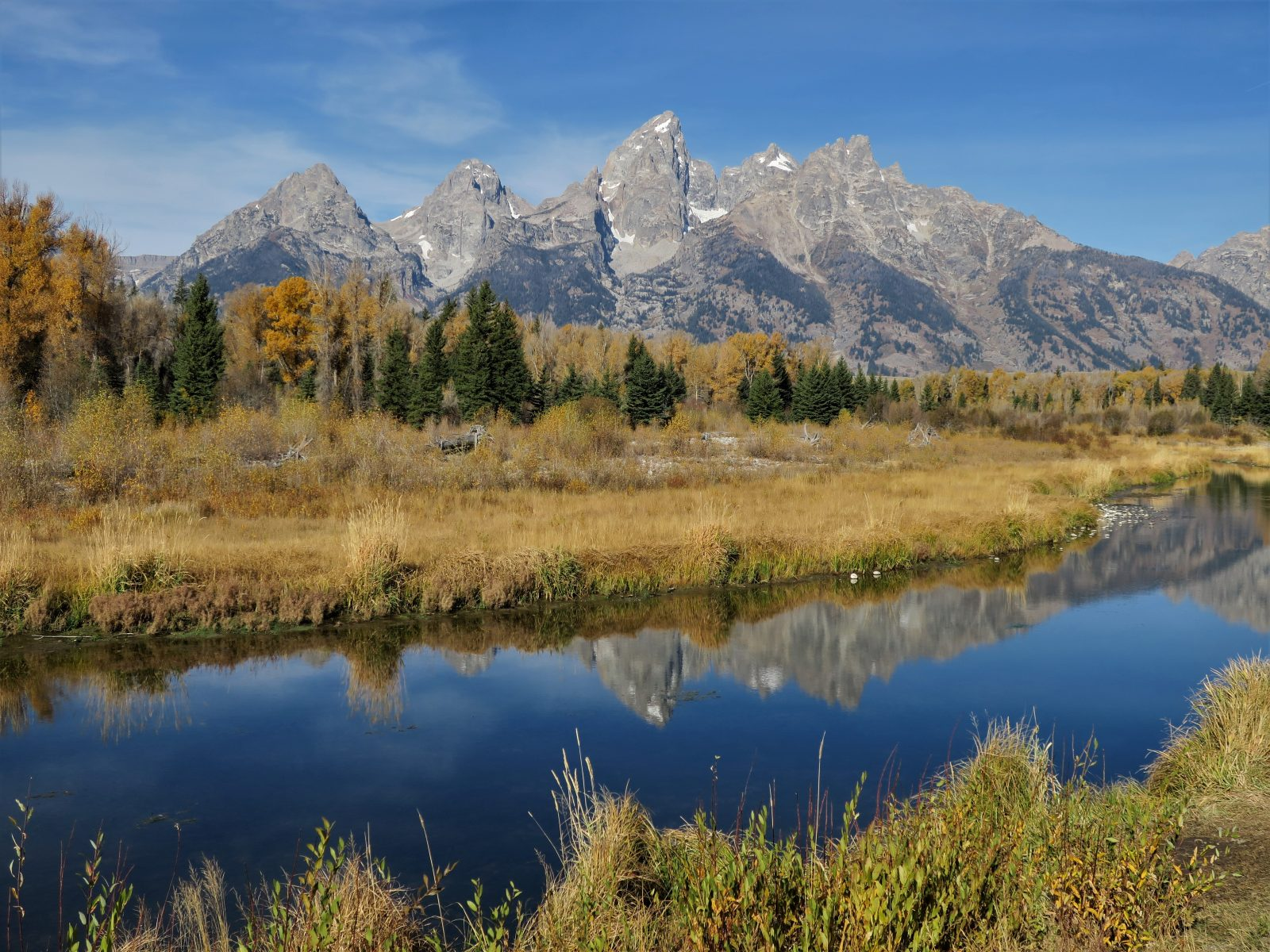 Peak Color at Schwabacher Landing