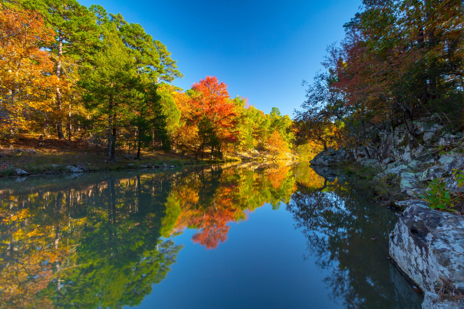 Coon Creek Fall Color