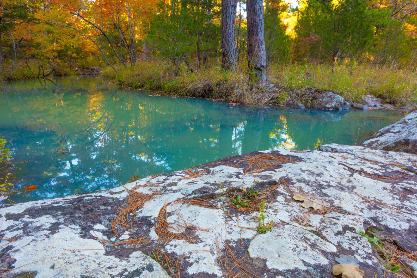 Blue Waters of Coon Creek
