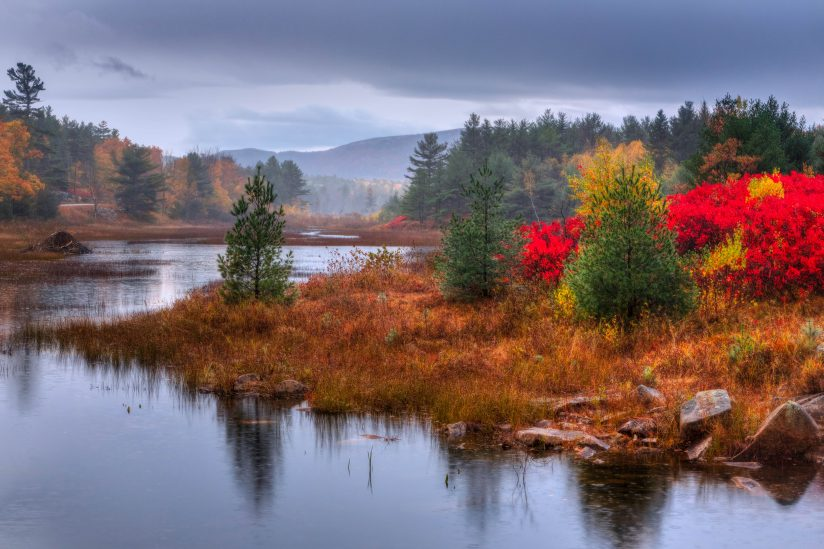 Maine's Fall Colors