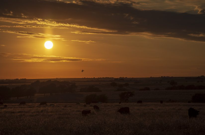 Sunset on a Texas Prairie