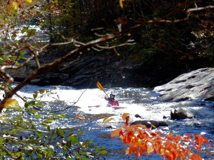 Kayaker in Tellico River