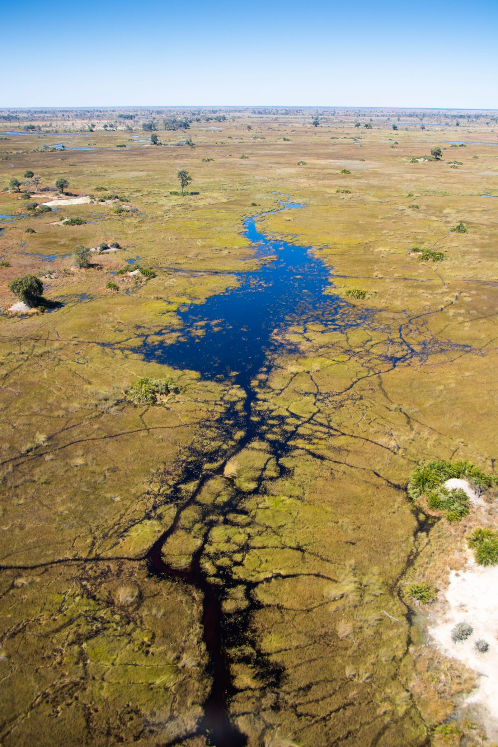 Over the Okavango