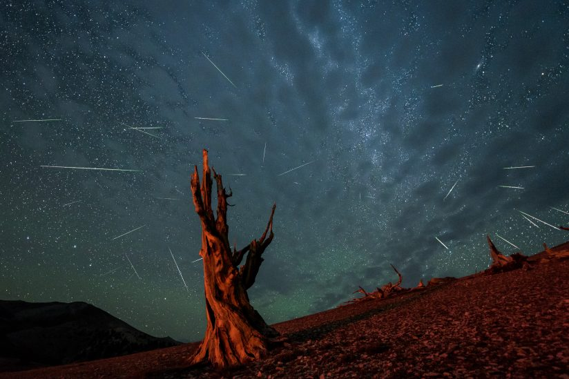 Perseid Meteor Shower in Red & Green