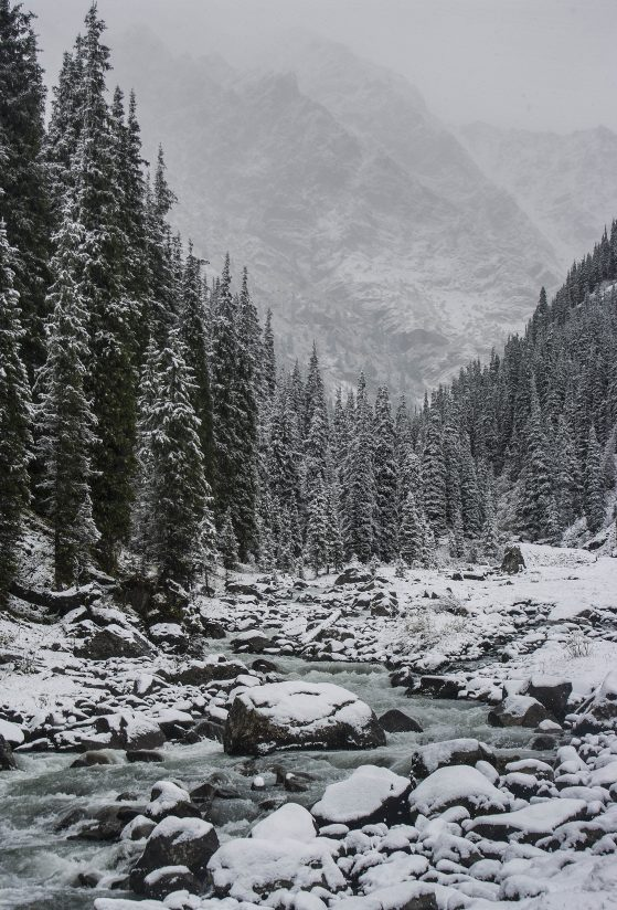 New Snow in the Tian Shan Mountains
