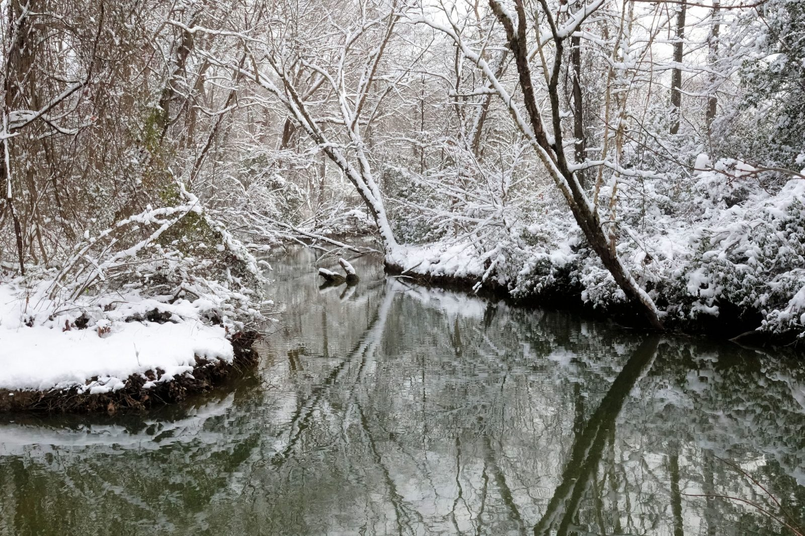 Reflections On Winter