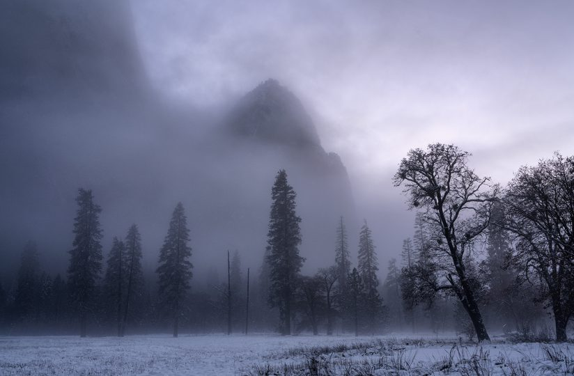 Mist at Dusk, El Capitan Meadow, Yosemite