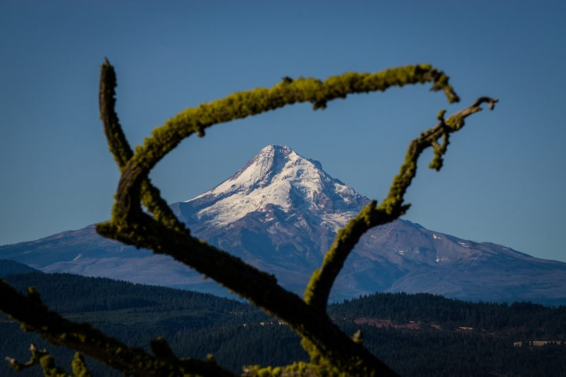 Framed Mt Hood
