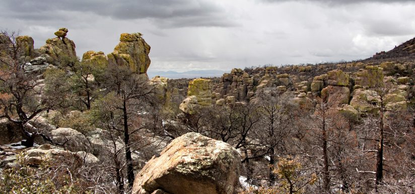 Chiricahua Panoramic View