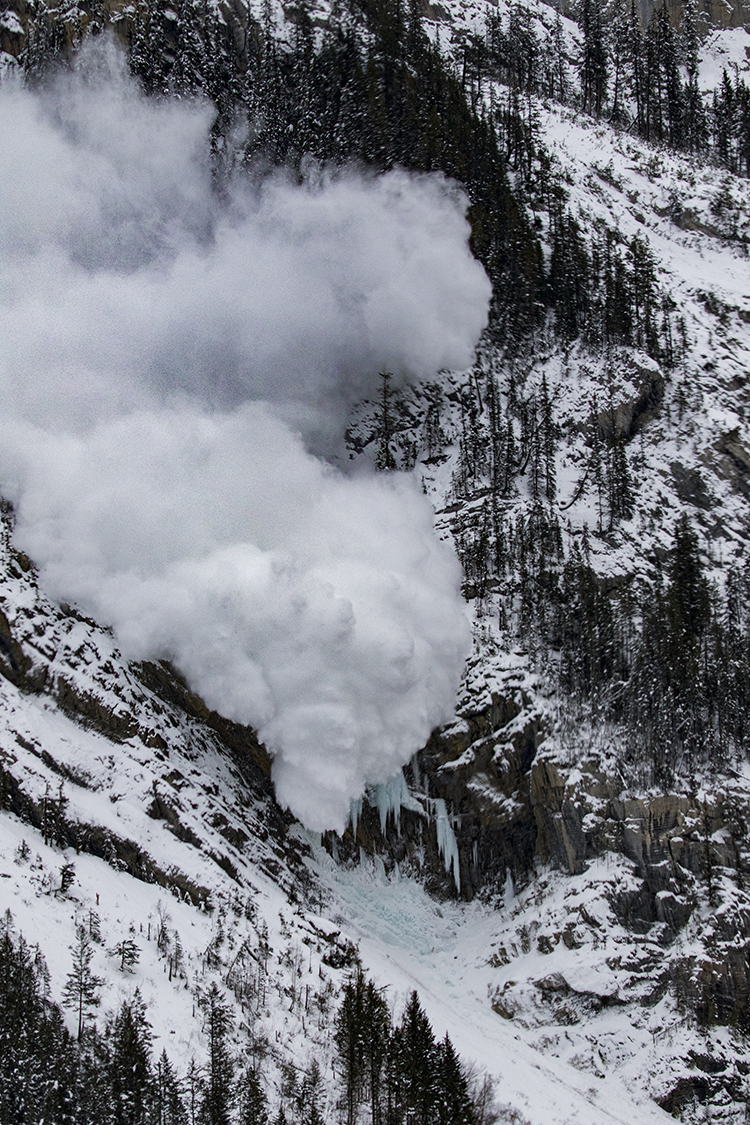 Avalanche Coming!