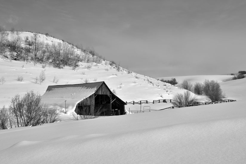 Winter Ranch B&W