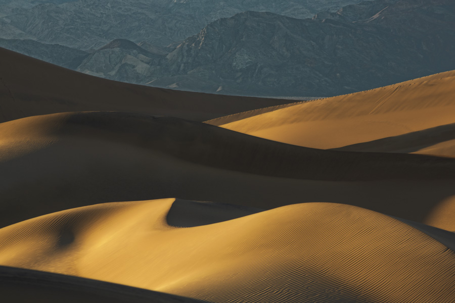 Late Afternoon on the Mesquite Dunes