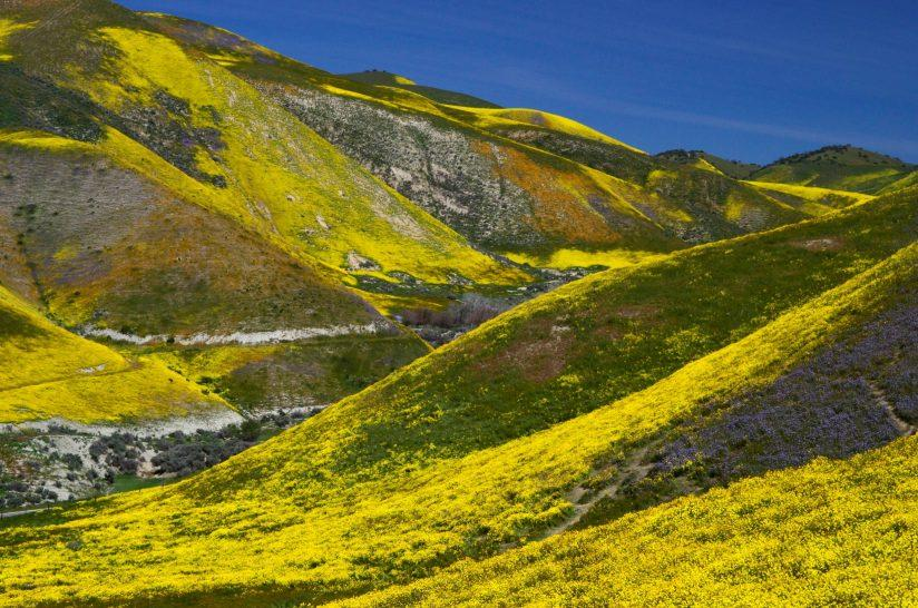 The Carrizo Plain 2