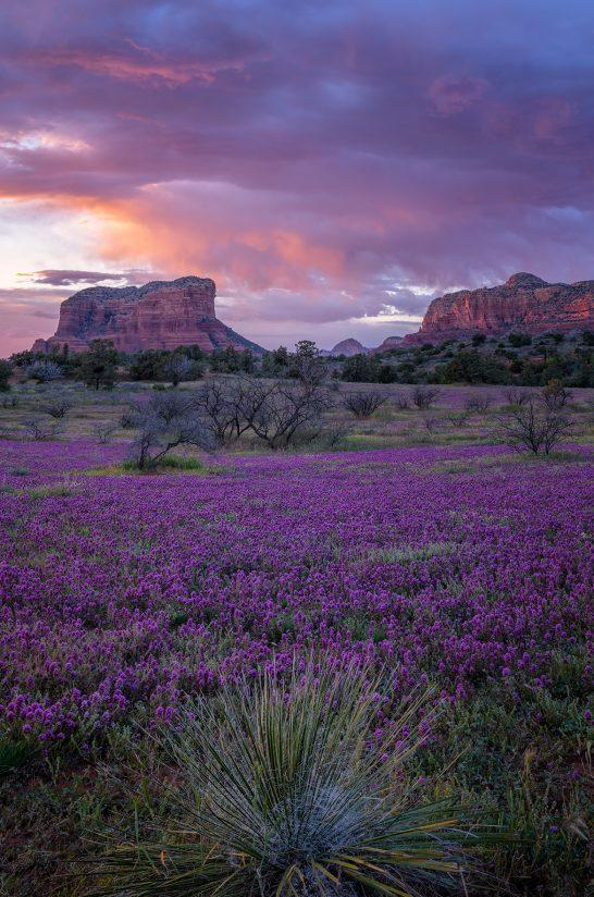 Sunset Drama in Sedona