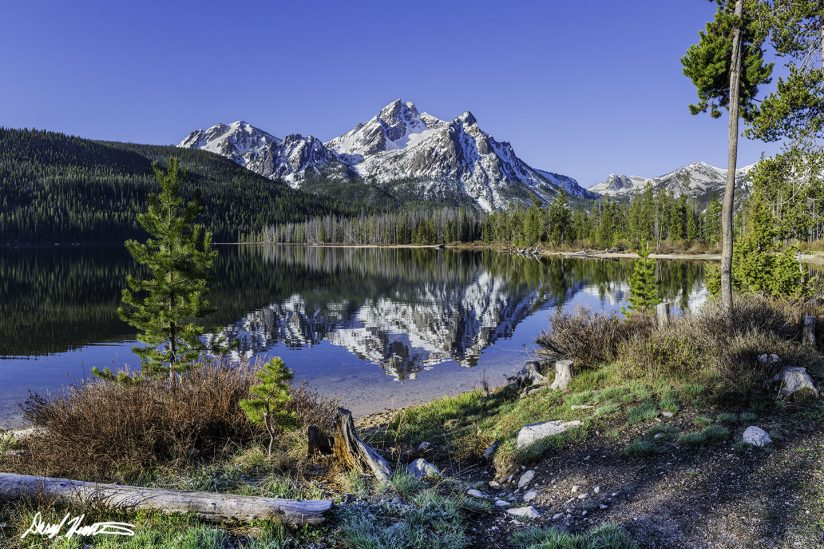 Sawtooth Reflection