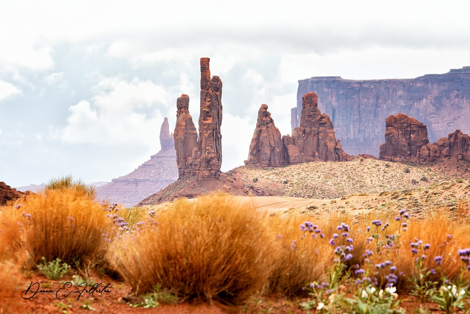 Spring in Monument Valley