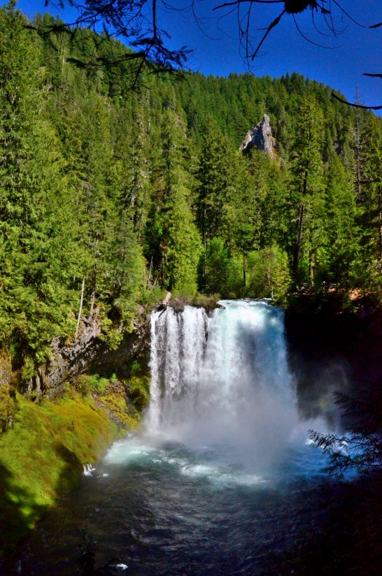 Spring Runoff on The McKenzie River – Koosh Falls