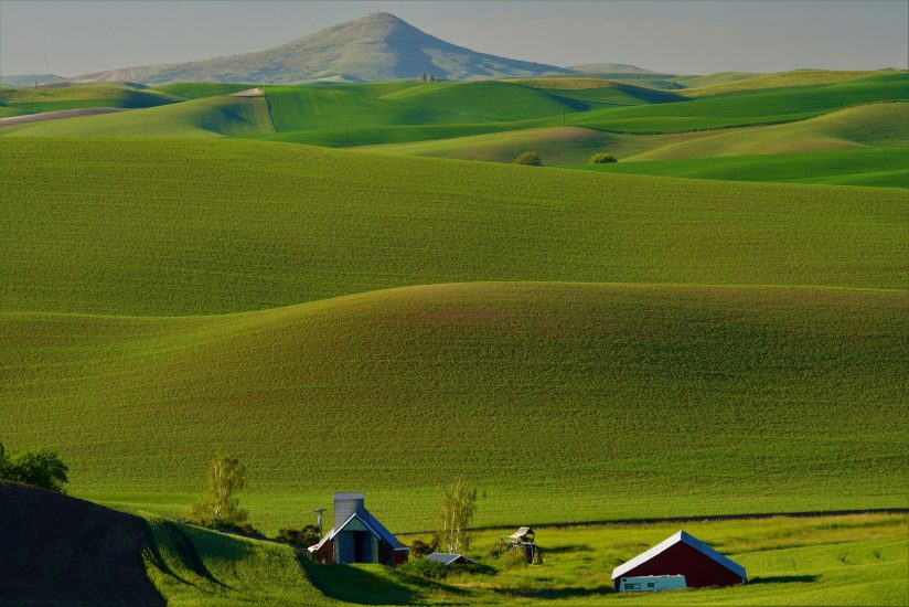 Steptoe Butte St. Park