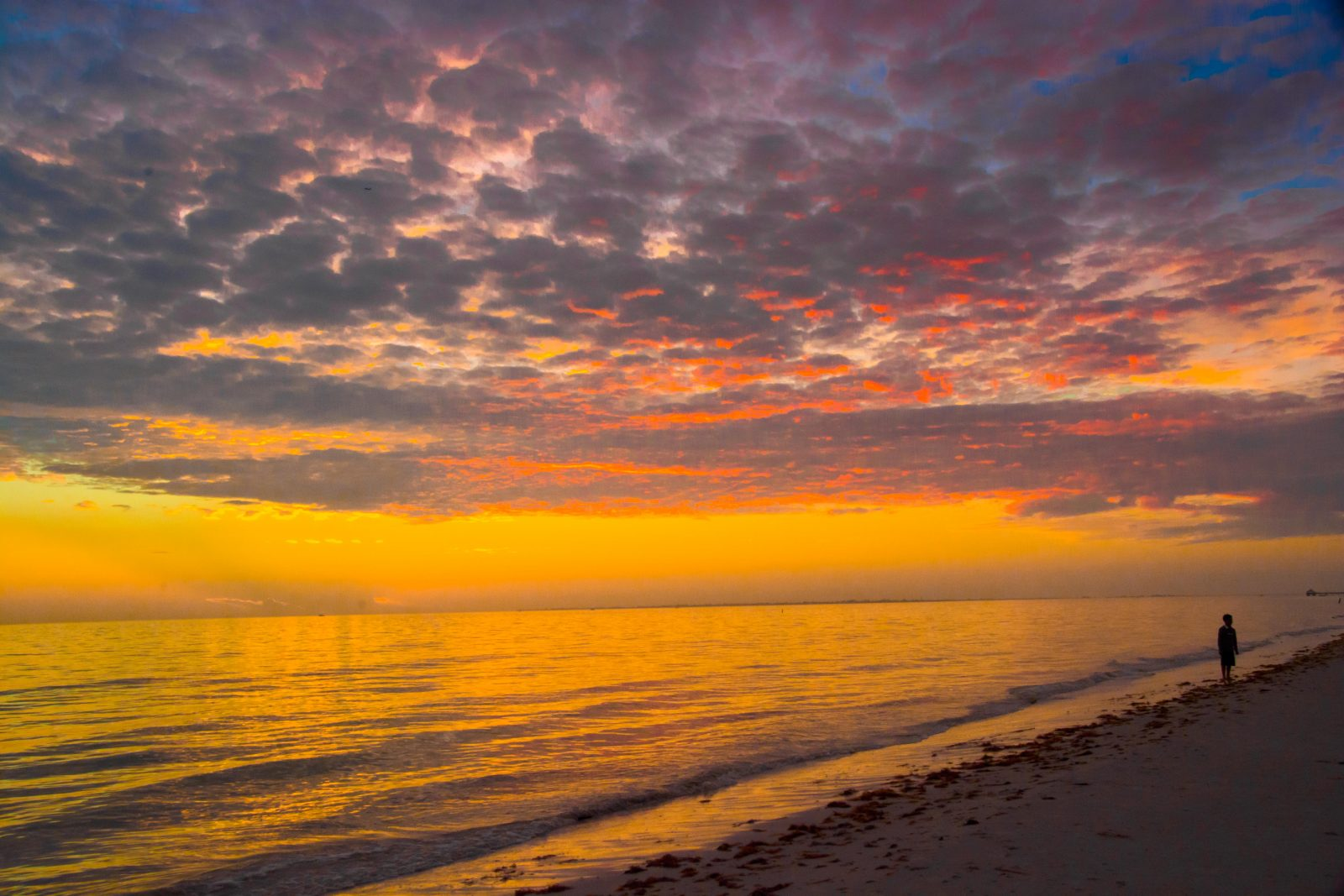 Fort Myers Sunset