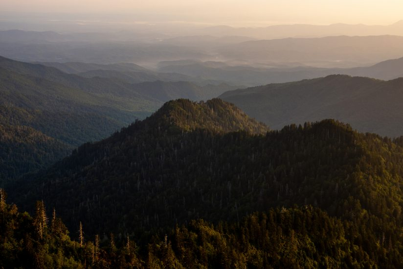 Morning Light in the Smoky's