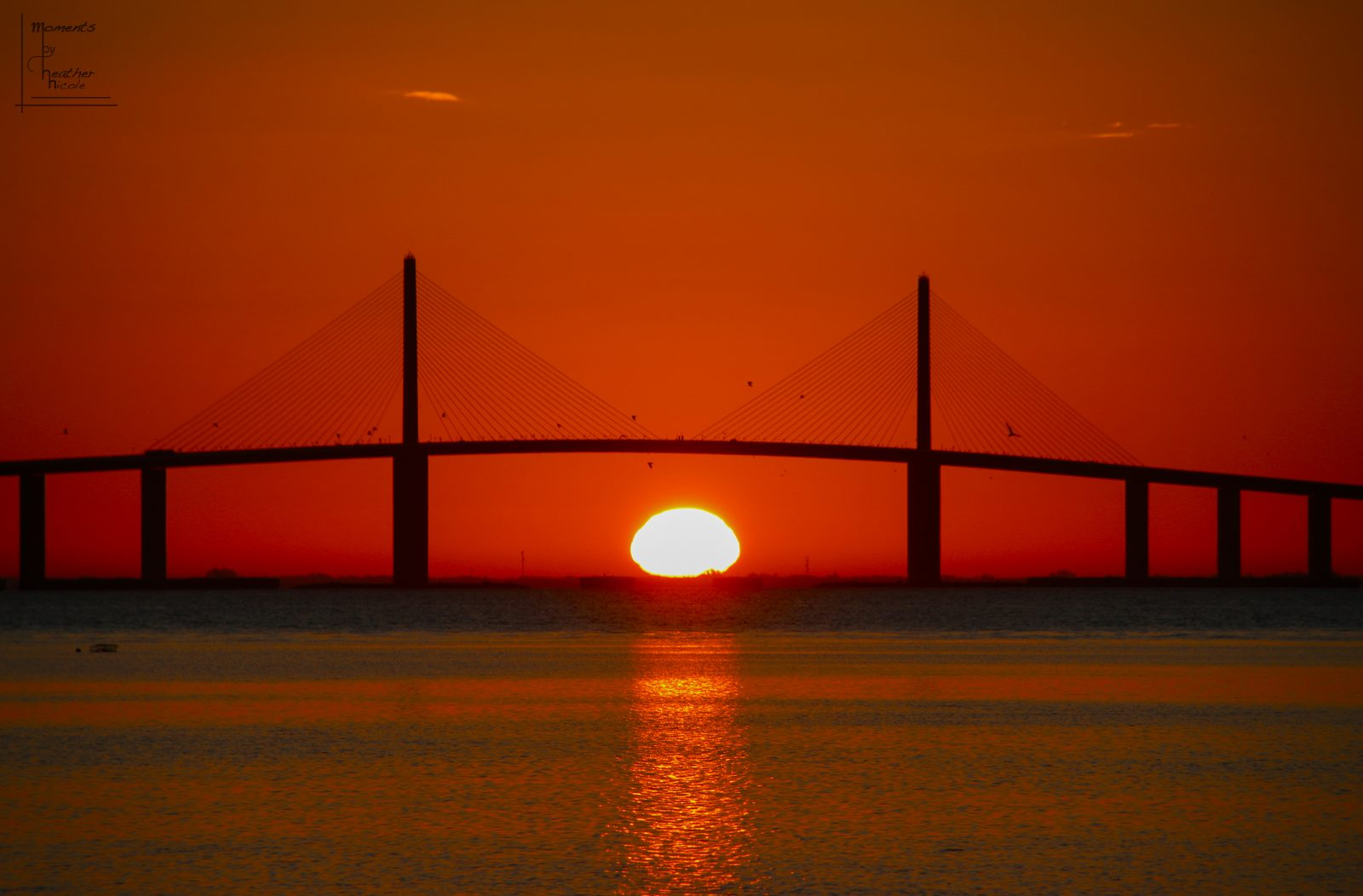 Skyway Sunrise