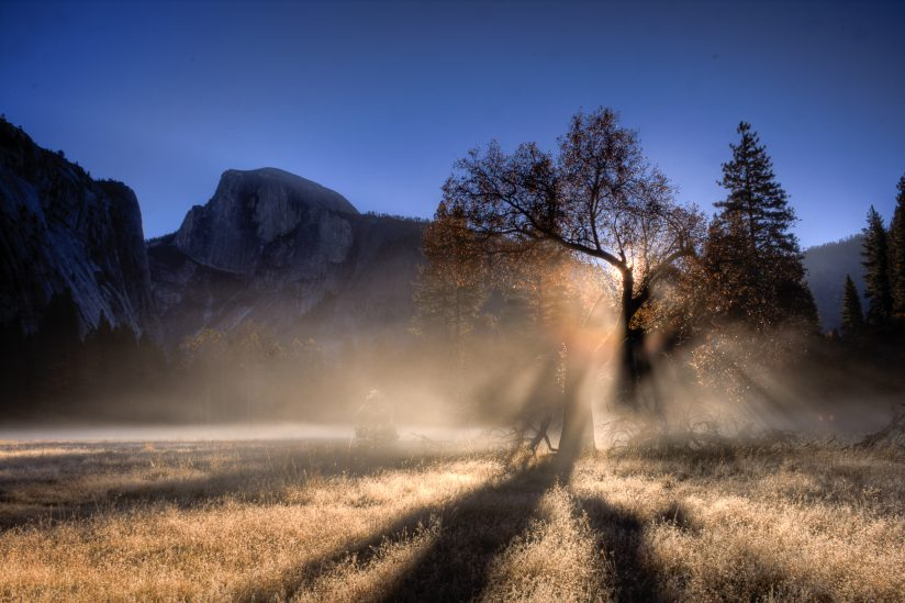 Frosty Morning Fog 'Bow in Yosemite Valley