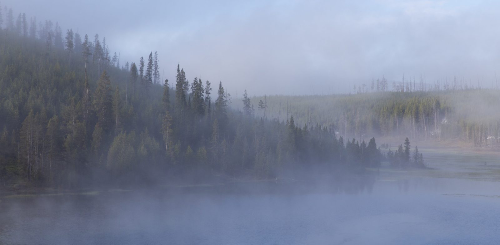 Yellowstone Morning Mist