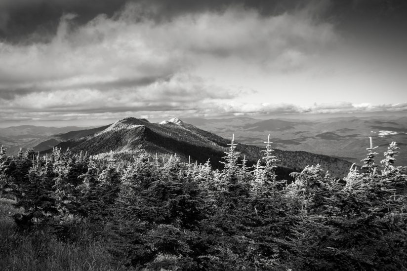 Hoar Frost on Mt Mitchell