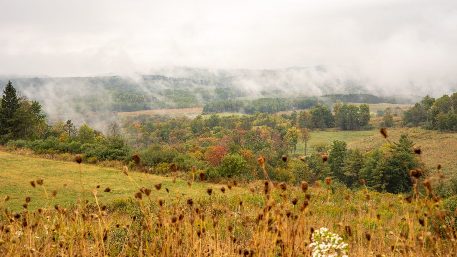 Autumn morning in Elk County