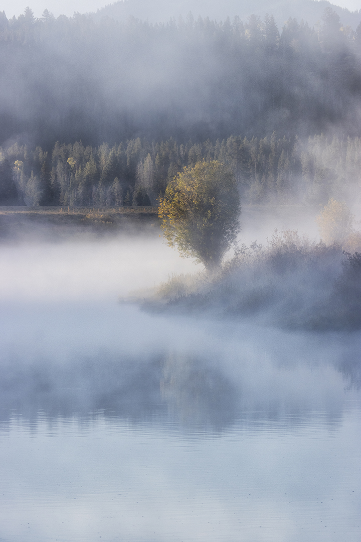 Foggy morning at Oxbow Bend