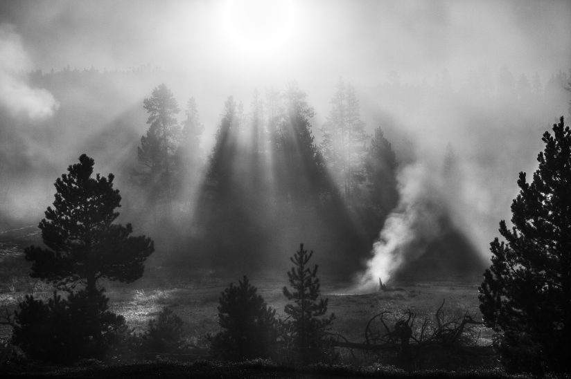 Geyser Basin Morning Sun Rays