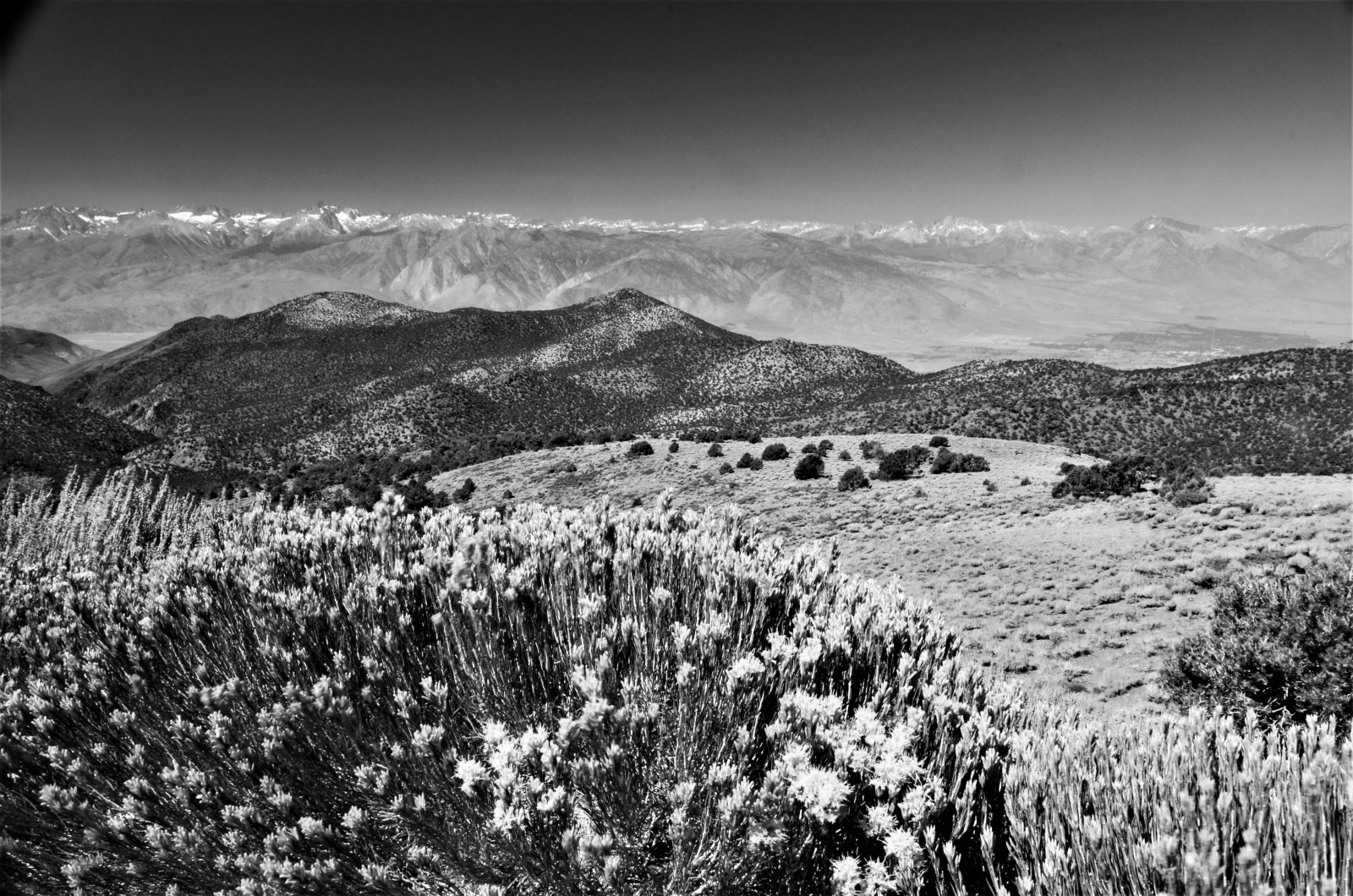 Above Owens Valley