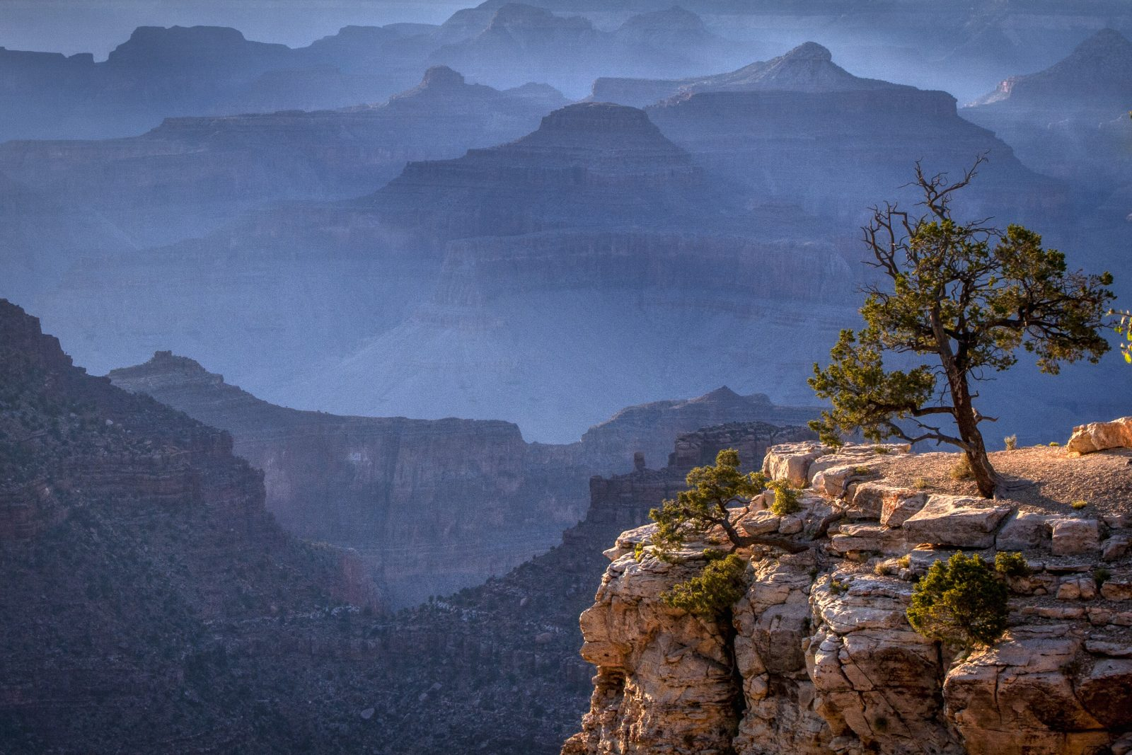 Last light in the Canyon