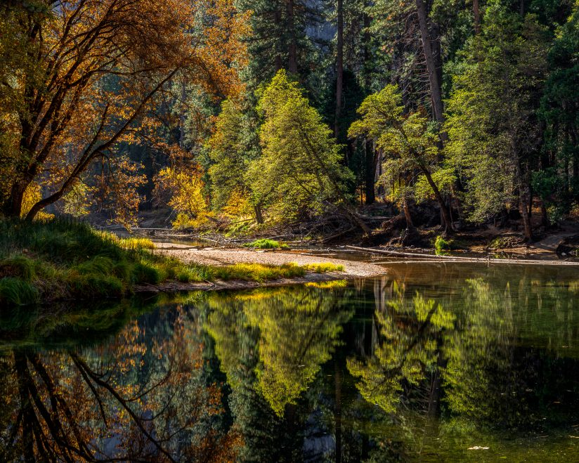 Merced River Reflection in Yosemite Valley