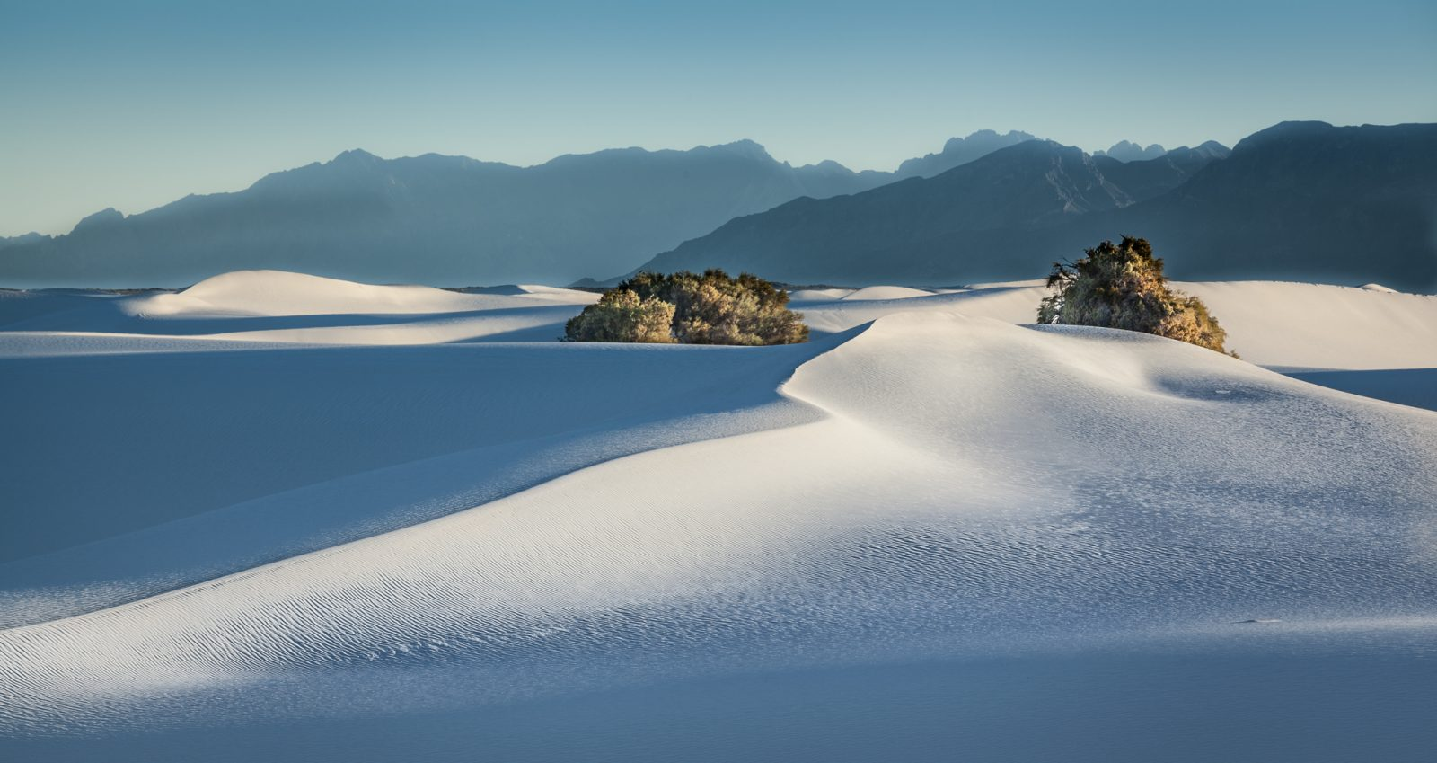 Shadows in the White Sands