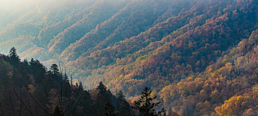 The Ridges of the Great Smoky Mountains