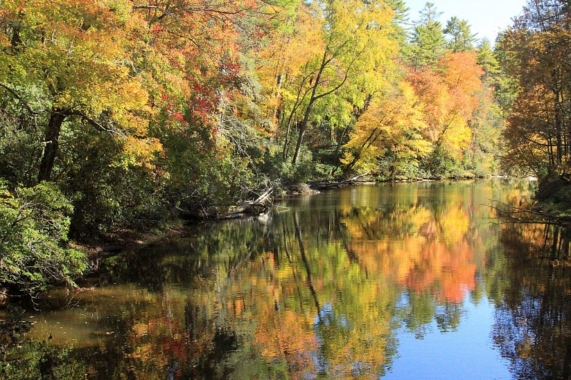 Linville River Reflections