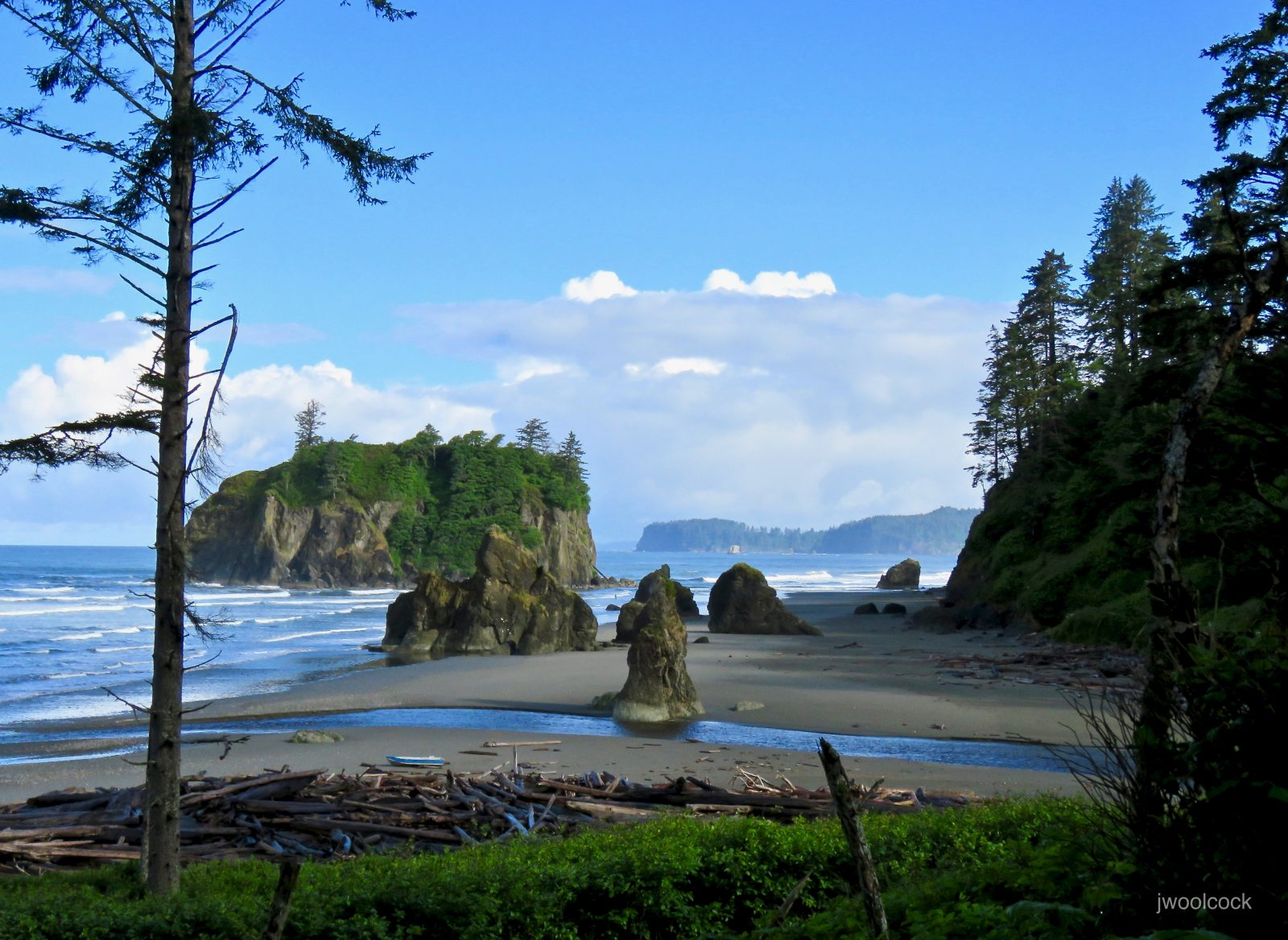 Ruby Beach, Olympic