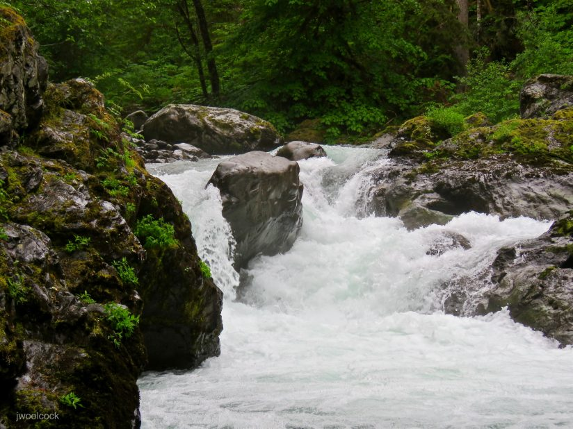 Sol Doc River Cascade, Olympic NP