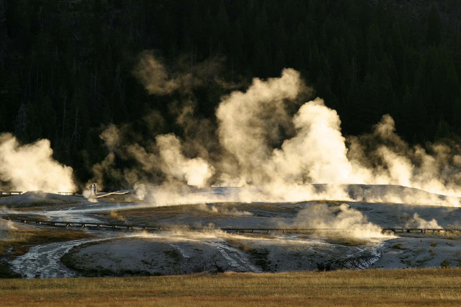 Upper Geyser Basin at dawn