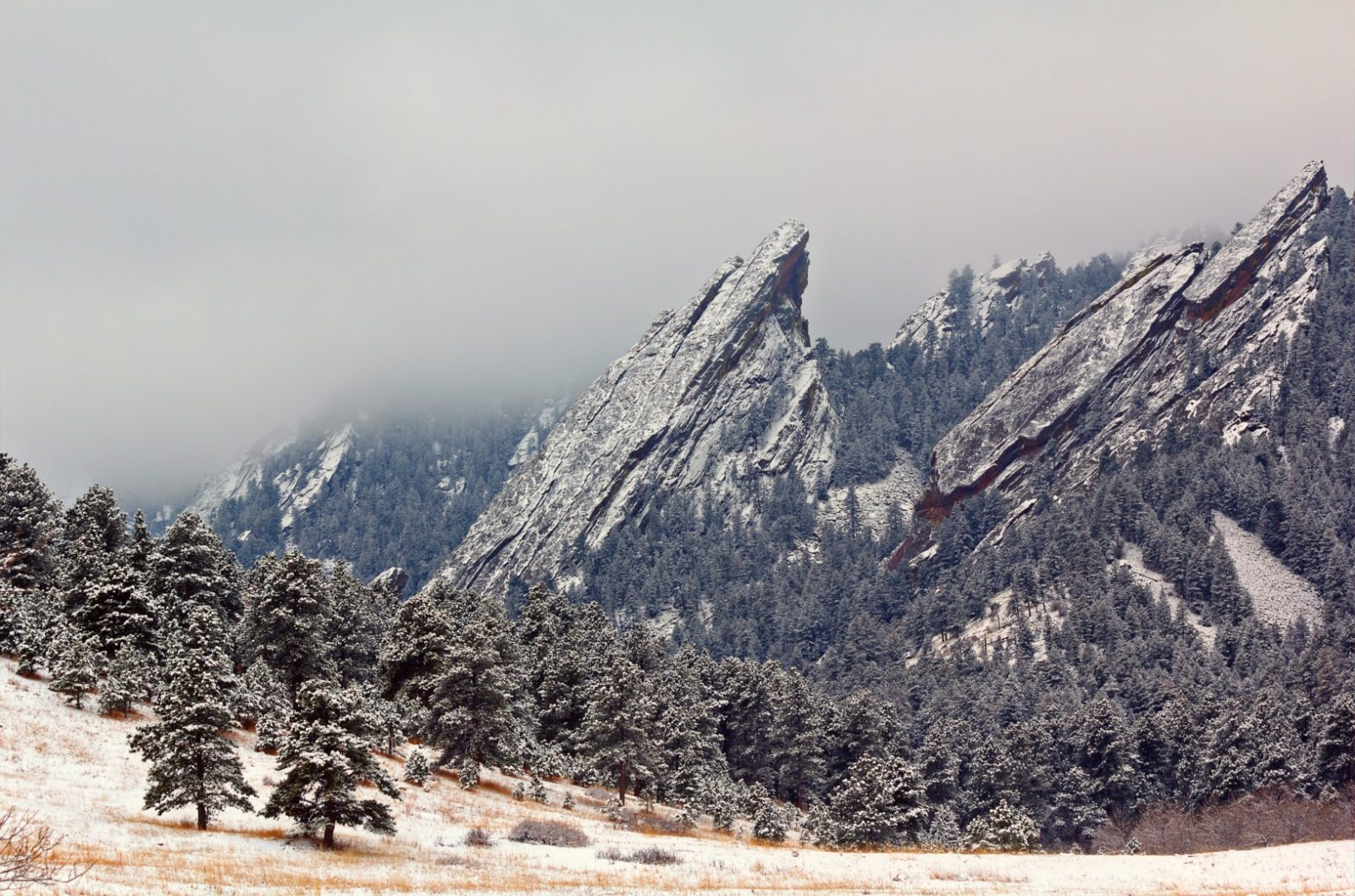 Flat Irons in the Fog